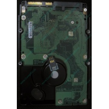 HP 454228-001 146Gb 15k SAS HDD (Новочебоксарск)