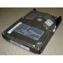 Жесткий диск 18.4Gb Quantum Atlas 10K III U160 SCSI (Новочебоксарск)