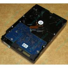 HDD 500Gb Hitachi HDS721050DLE630 донор на запчасти (Новочебоксарск)
